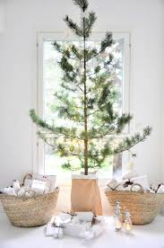 Organic Christmas Trees Christmas Tree Ideas For Small Spaces Christmas Tree Small Spaces