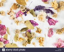dried flowers potpourri scented home decorations looking stock