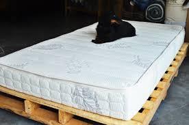 nest bedding q3 junior latex mattress reviews goodbed com