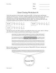 gene cloning worksheet 1 9th 12th grade worksheet lesson planet