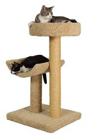 Modern Cat Scratching Post 9 Best Cat Tree Oct 2017 The Dear Lab