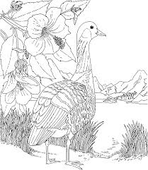 hawaii coloring pages bestofcoloring com