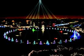 lights at lincoln park zoo christmas in chicago