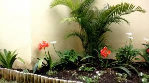 imagenes de jardines pequeños con flores el reino plantae plantas un jardin pequeño
