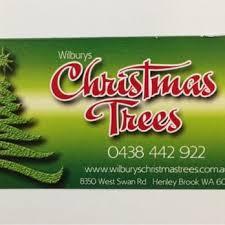 wilbury u0027s traditional christmas trees builders 8350 w swan rd