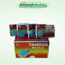 tanduk rusa obat kuat herbal toko amanah herbal