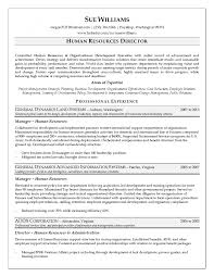 director human resources resume cover letter sample human resources manager resume human resources