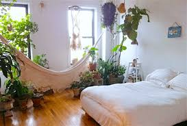 10 plants for your bedroom that will improve sleep quality and
