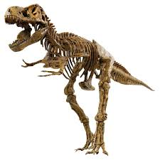 Dog Skeleton Halloween Decoration by Skeleton Toy Ebay
