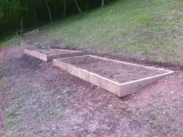 plants dirt raised beds and more grow appalachia