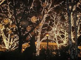 643 best christmas lights u003c3 images on pinterest christmas time