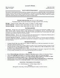sle resume templates resume for a retail musiccityspiritsandcocktail
