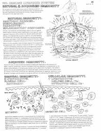 coloring page 2 immune system immunology pinterest immune