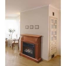 fireplace amazing pleasant hearth fireplace doors for best