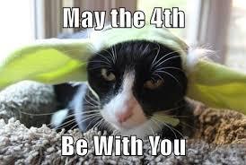 Star Wars Cat Meme - star wars cat meme tux the dapper gent