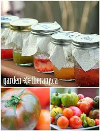 155 best garden seeds images on pinterest garden seeds plants