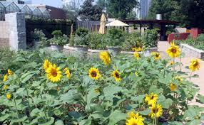 Botanical Gardens In Atlanta Ga by Plant Collections Atlanta Botanical Garden