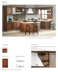 kitchen design goldenhome