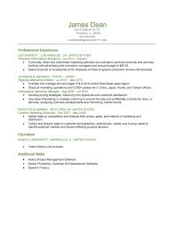 example of a executive level reverse chronological resume download