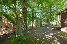 Tierpark Bad Liebenstein Urlaubspark Grimmenstein Gbr Thueringer Wald De
