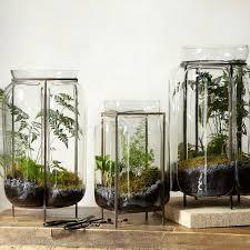 evan dublin frame terrarium contemporary terrariums jpg