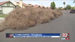 tumbleweed trouble youtube