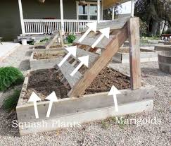 squash growing racks made out of pallets diy gardening pallet