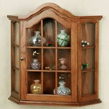 Kitchen Cabinet Features Curio Cabinet Amusing Kitchen Walled Curio Cabinet Features Red