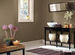 Best Brown Wall Color Images On Pinterest Wall Colors Dark - Brown paint colors for living room