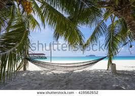 white hammock stock images royalty free images u0026 vectors