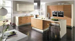 Kitchen Cabinets Minnesota 100 Changing Color Of Kitchen Cabinets Cabinet Doors Simple