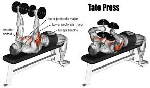 triceps workout at home to have smart and strong arms