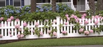 picket fences picket fence design with beautiful pink and purple flower ideas