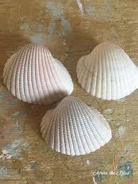 sea shell angel ornament hometalk