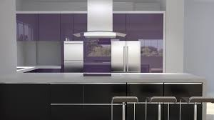 High Gloss Paint For Kitchen Cabinets High Gloss Kitchen Cabinets Doors U2014 Tedx Designs The Best Of