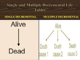 Single Life Expectancy Table by Life Table Analysis