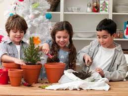 how to grow an indoor garden cache valley family magazine