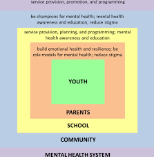 mental health of south asian youth in peel region toronto canada