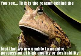 Fact Frog Meme - image 45950 this is why we can t have nice things know your
