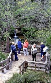 Texas Travel Log images Texas travels pedernales falls state park a hill country jewel jpg
