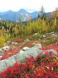 Washington travel alone images 109 best pnw places to visit images washington jpg
