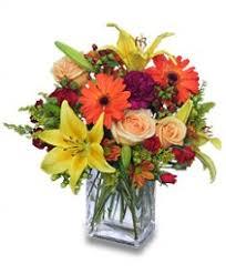 Flowers Killeen Tx - copperas cove florist copperas cove tx flower shop michele u0027s