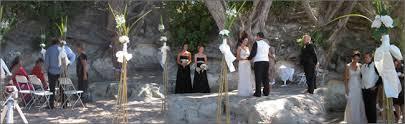 wedding arches nz wedding decorations nz decoration