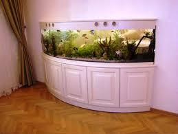 Home Aquarium by Fish Tank Unique Aquarium Design Picture Ideas Designer