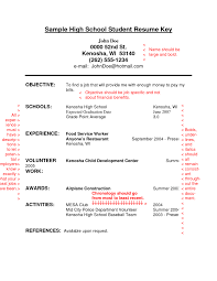 Examples Of Amazing Resumes by Resume Examples For High Students