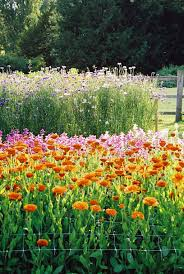 Walled Garden Login by Easton Walled Gardens