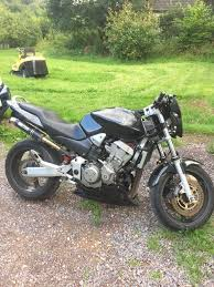 honda hornet 900 honda hornet 900 in seaton devon gumtree