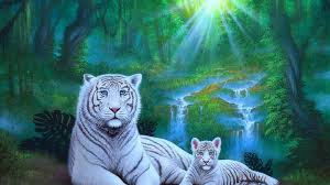 simplywallpapers com family of white tigers trees lovely sunbeam