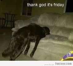 Thank God Its Friday Memes - its finally friday memes kabar blok