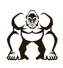 angry silverback gorilla drawing guru angry bird coloring